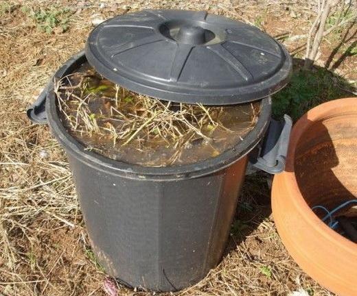 Разводим органические удобрения для подкормки