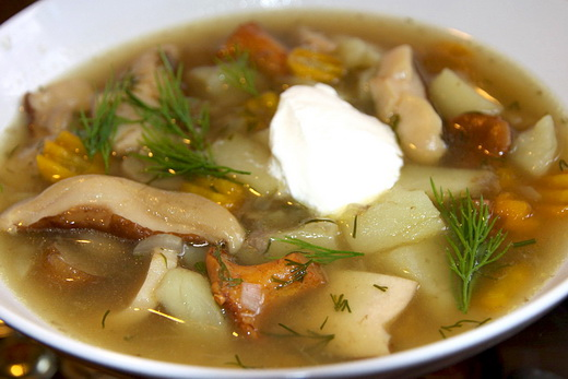 Суп с грибами рыжиками