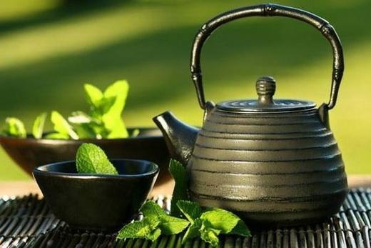 Чай из шандры