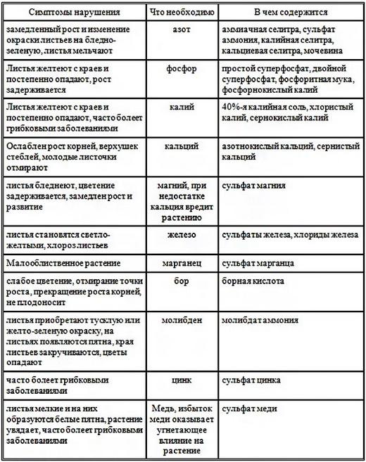 Виды удобрений при подкормке